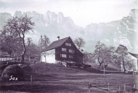 Sax Haus Düsel Farnen