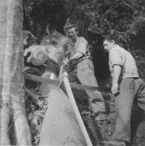 40holzen - aspenhans (2)