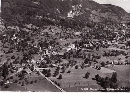 Sennwald Foto Gross, St. Gallen, Nr. F 3564, 1954 _RU