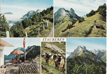 Staubern Foto Gross, St. Gallen, Nr. 34401 fb _RU