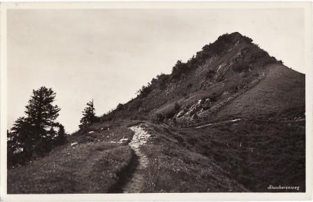 Staubern FotoVerlag Ernst Eisenhut, Krontal, Nr. 822 _RU
